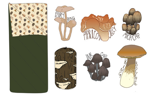 An assignment in which I had to create a collection of products that served a common purpose. I chose to create a sleeping bag design that could double as a foraging guide for edible mushrooms in the Pacific Northwest. The sleeping bag bag is designed to look like a log with fungus growing out of it.  Project timeline: 3 weeks