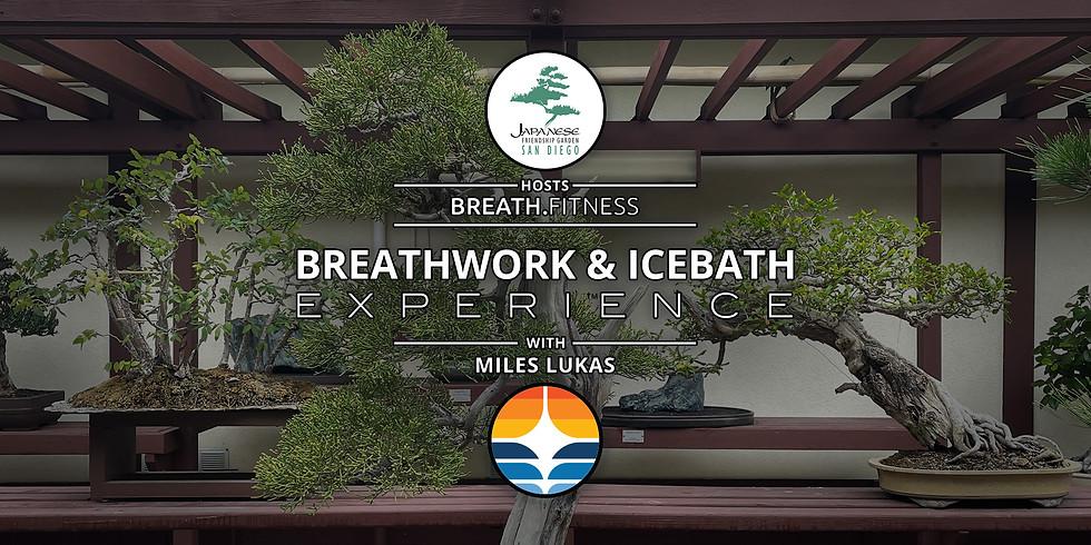 Breathwork & Icebath Experience | San Diego