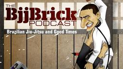 BJJ Brick #300