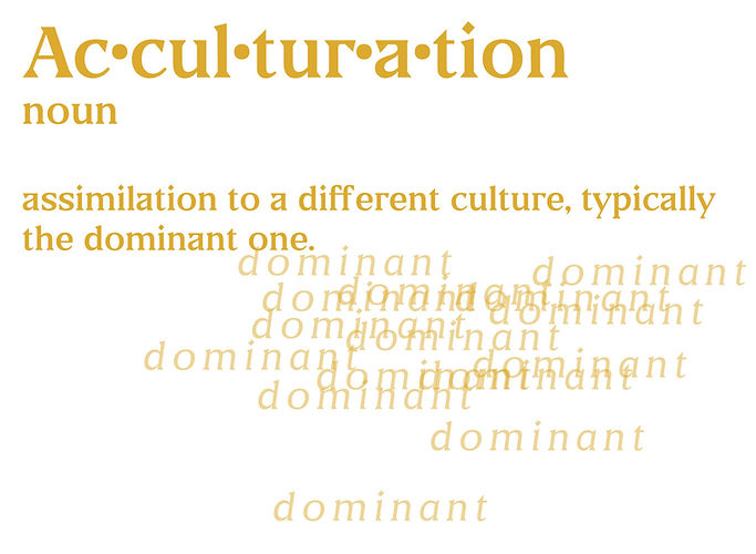 acculturation-layout.jpg