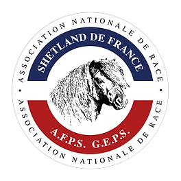 LOGO AFPS GEPS.png