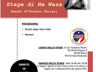 Stage di Ne Waza 16/3/2019