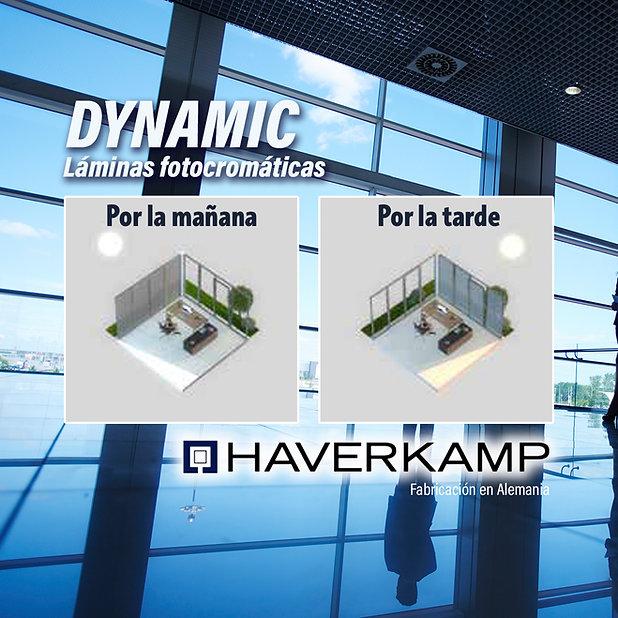 Dynamic FOLIX Haverkamp.jpg
