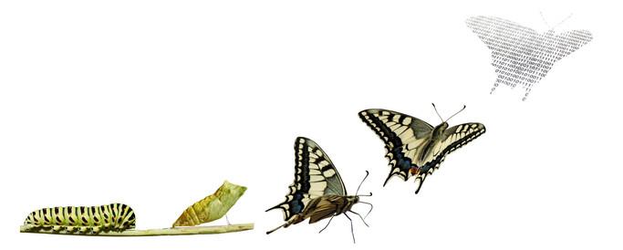 La nueva realidad, un acelerador para la transformación de empresas