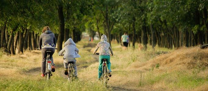 7 Cosas que mamás e hijos pueden hacer para frenar el calentamiento global