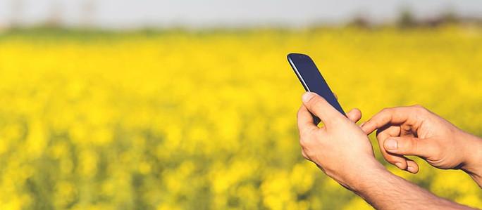 BASF impulsa la innovación agrícola para llevar tecnologías cada vez más sustentables a los agricult