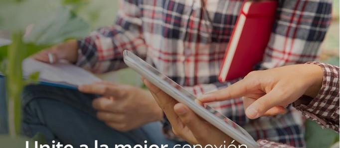 La importancia del acceso a Internet durante el aislamiento social