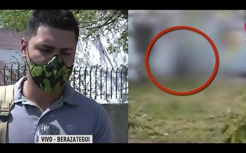 Denuncian que un hombre mató a su perro al colgarlo de un árbol en Berazategui