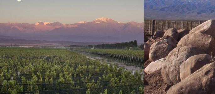 COVIAR firmó convenio con el BID para financiar estudios en las regiones vitivinícolas de Argentina