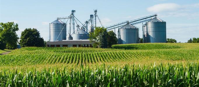 El ascenso de la agroindustria