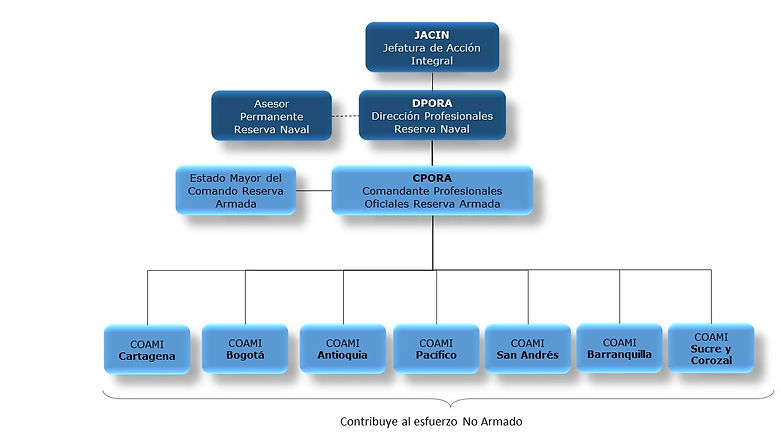 organigrama RNb.JPG