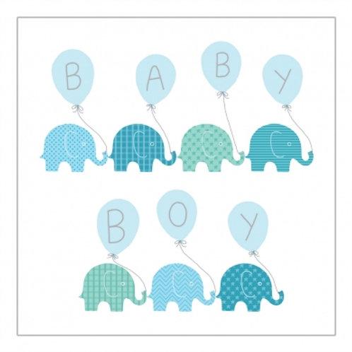 Baby Boy Elephants