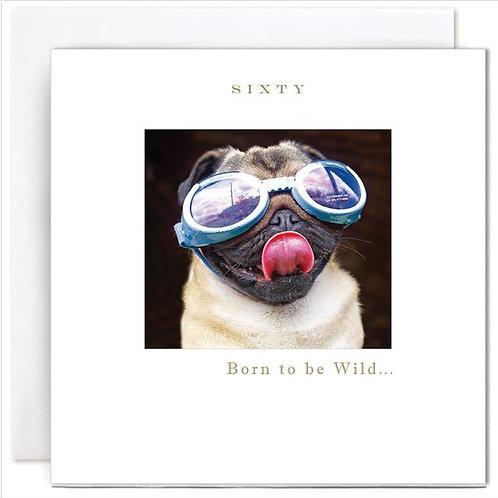 60 Born to be Wild