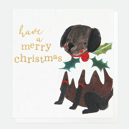 Painted Dog Pudding Charity Pack of 8