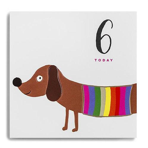6 Today Sausage Dog Birthday Card
