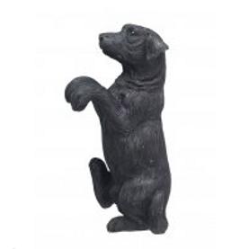 Black Dog Pot Hanger