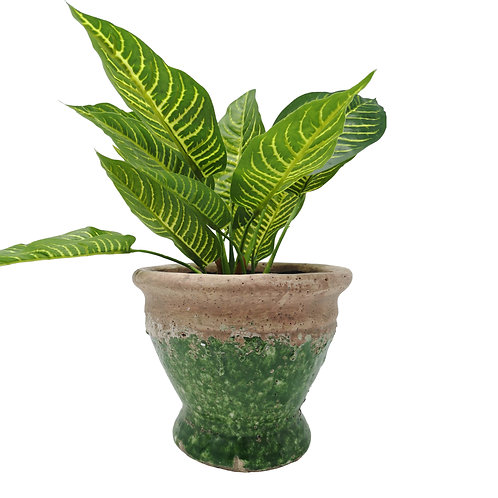 Casa Verde Small and Large Planter Rustico Verde