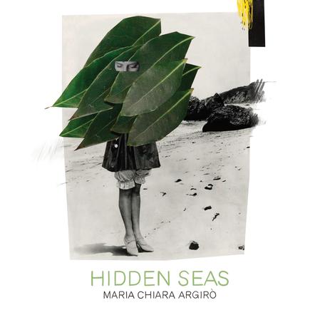 Hidden Seas