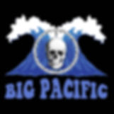 The Big Pacific is a blues-based, classic rock band comprised of professional musicians who have collectively entertained audiences across the globe.
