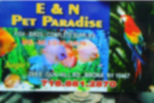 e & n pet paradise logo