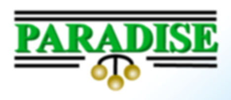 paradise pawn logo