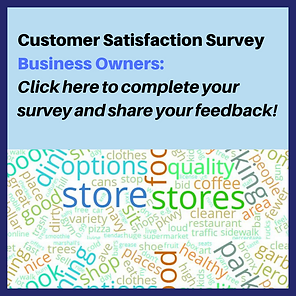 Customer Satisfaction Survey Business Ow