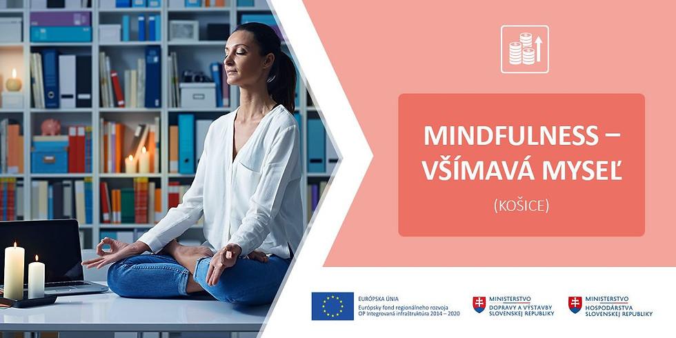 Mindfulness – všímavá myseľ (Košice)