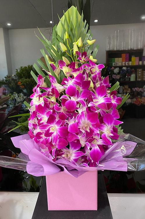 Singapore orchid box