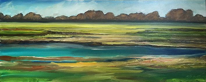 Wetlands 3_031519.jpg