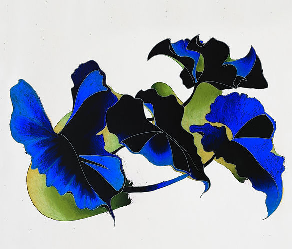 Botanical drawing of foliage in blue and lime green