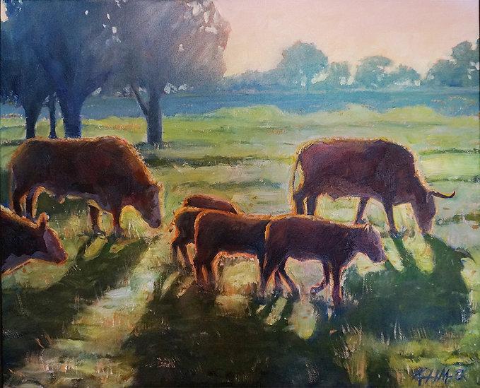 Plano Cows 1.jpg