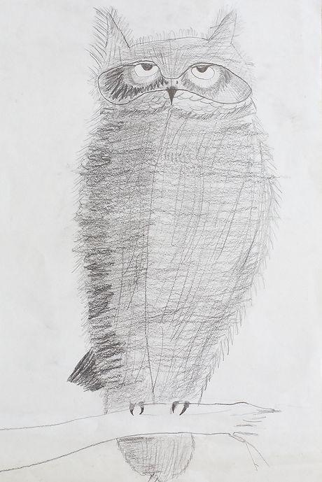 Pencil sketch illustration of a cute grumpy owl for Halloween