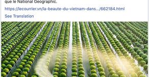 Press article   Le Courrier du Vietnam