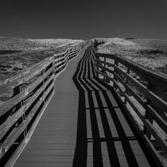 DuneBoardwalkPlumIsland (1 of 1).jpg