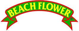 Beachflower.jpg