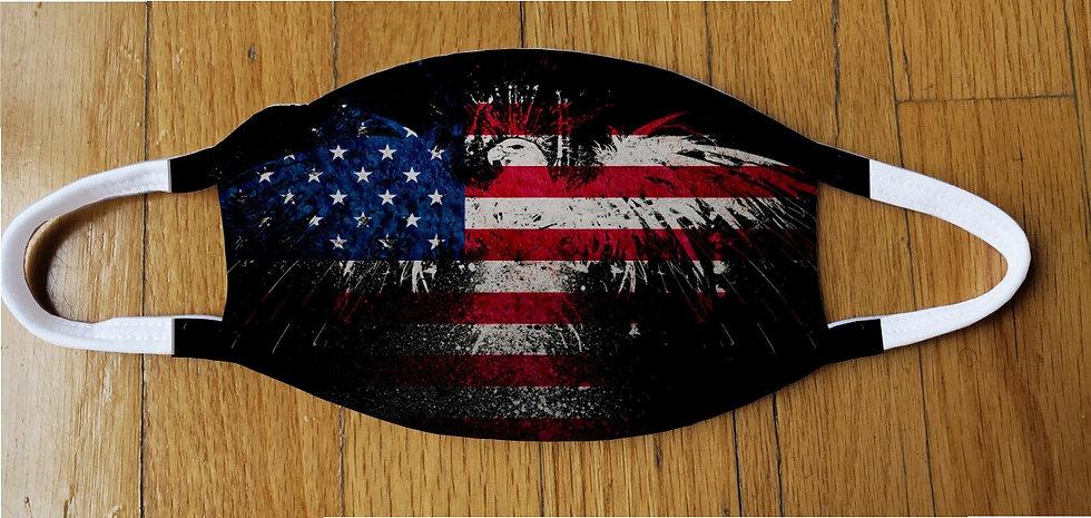 Fireworks Eagle Fashion Cover