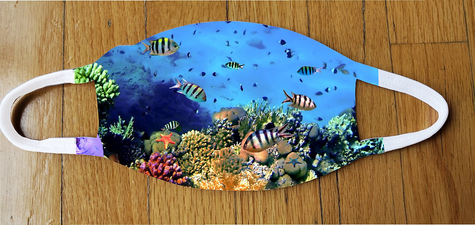Fish Life Fashion Cover