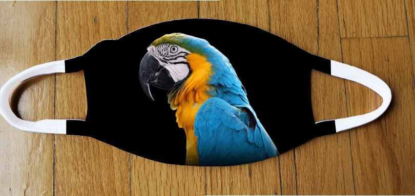Blue and Gold Macaw Fashion Cover