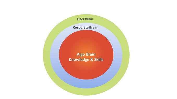 Aigo Brain.jpg