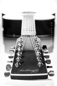 guitarra_by_bphouse-5211_jpg_bn.jpg