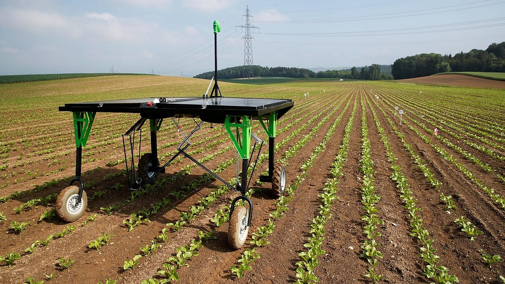 Artificial Intelligence in Agricuture