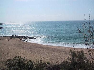 Playa[2].JPG
