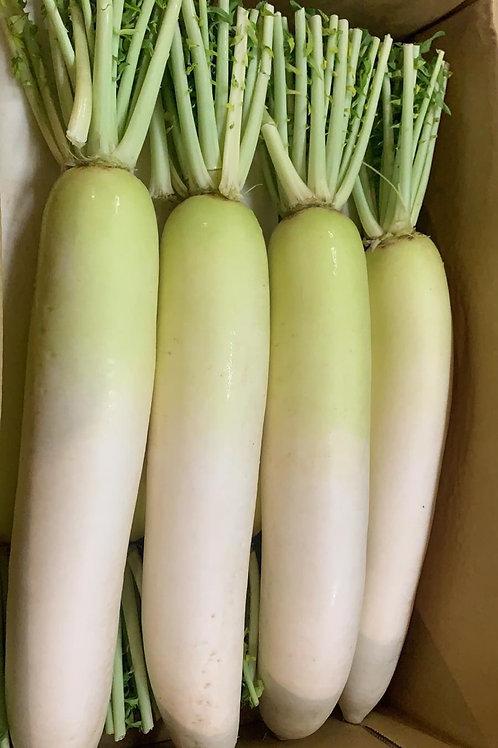 日本直送 十勝大根蘿蔔
