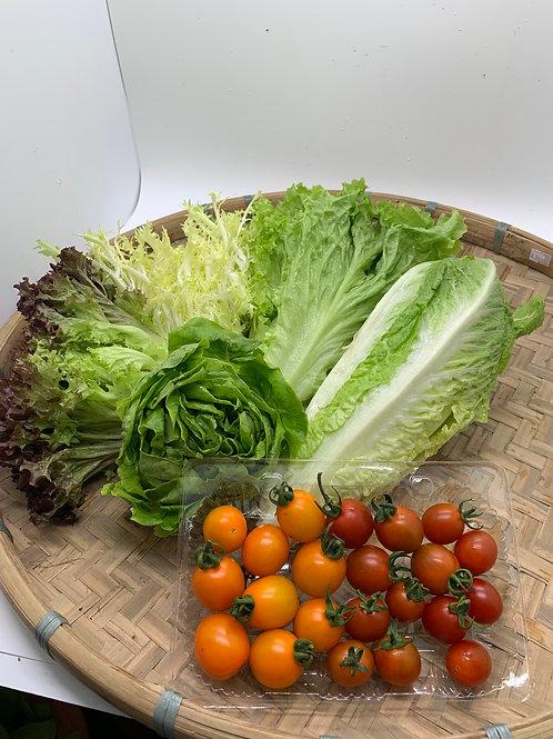 新鮮即割5款沙律菜連車厘茄套餐