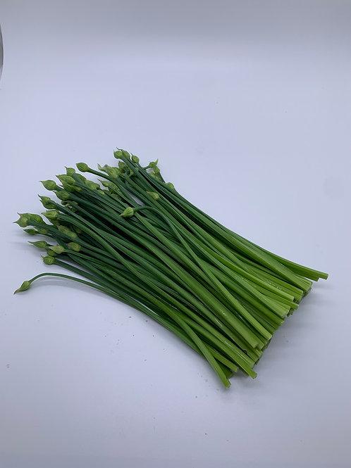 進口韭菜花