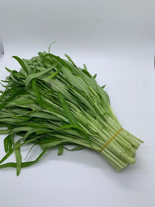 本地新鮮即割 白通菜32/斤