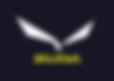 salewa-logo-700x498.png