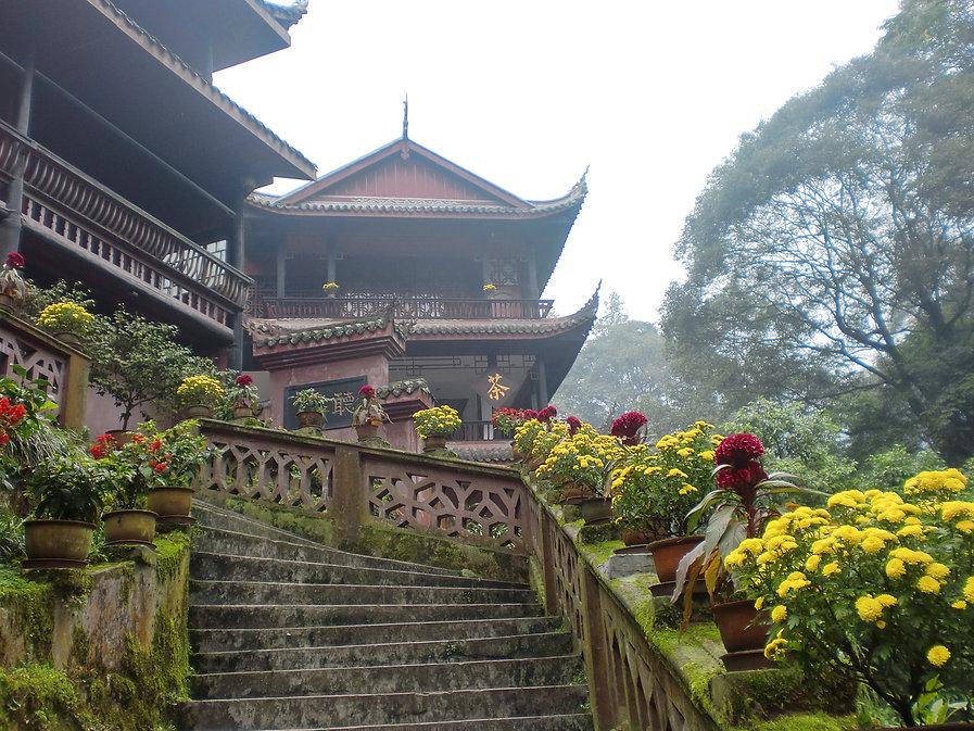 Emei Shan Teahouse.JPG