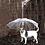 Thumbnail: Guarda chuvas