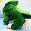 Thumbnail: Dino